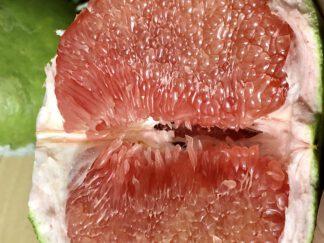 ส้มโอทับทิมสยาม